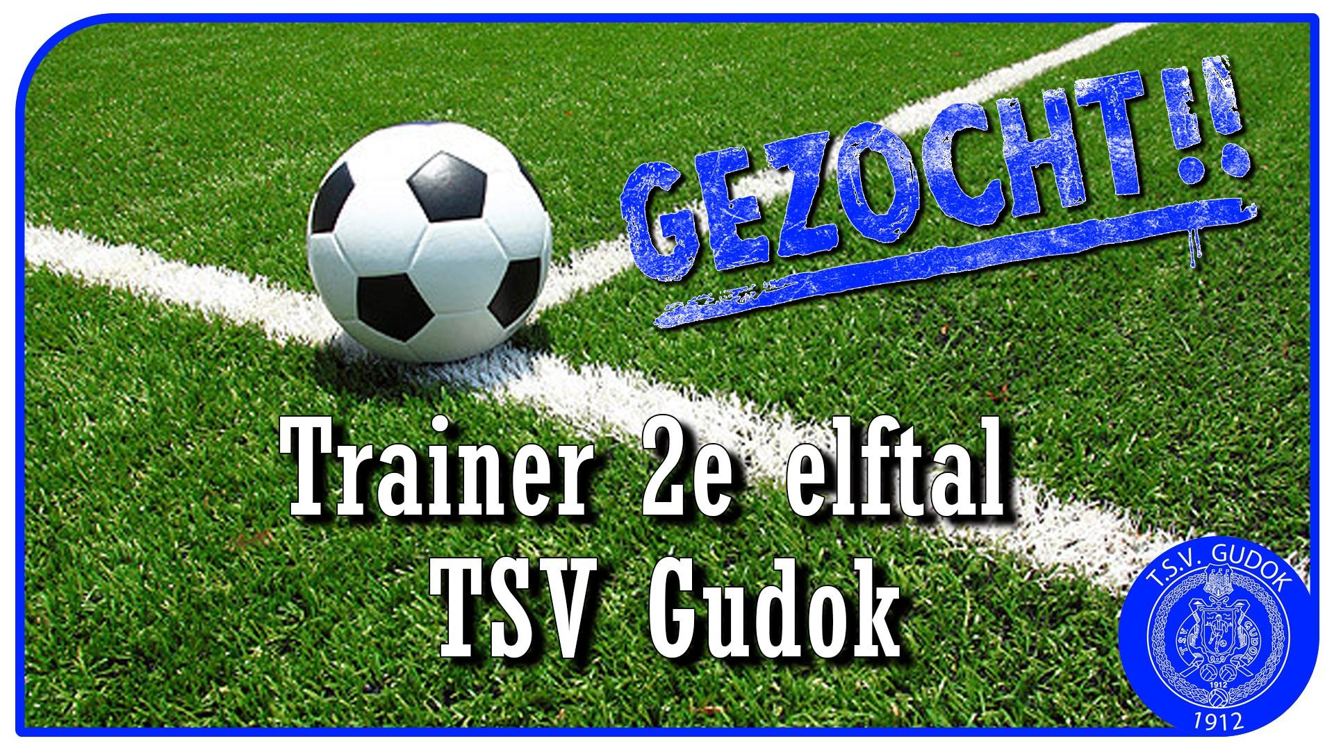 Vacature trainer 2e elftal TSV Gudok